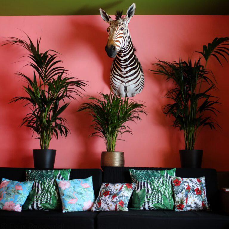 Über unserem kuschligen Sofa schaut dir das Zebra gerne mal zu.